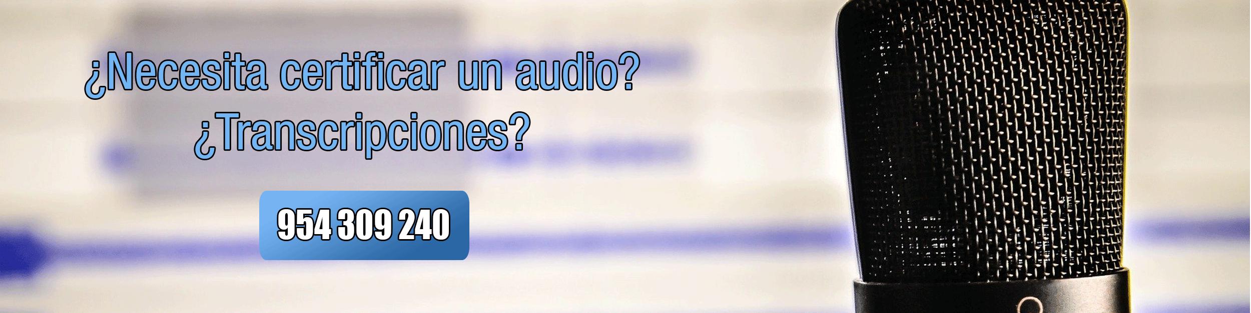 perito-informatico-sevilla-audio